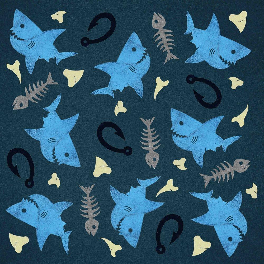 Shark Pattern Final 3.jpg
