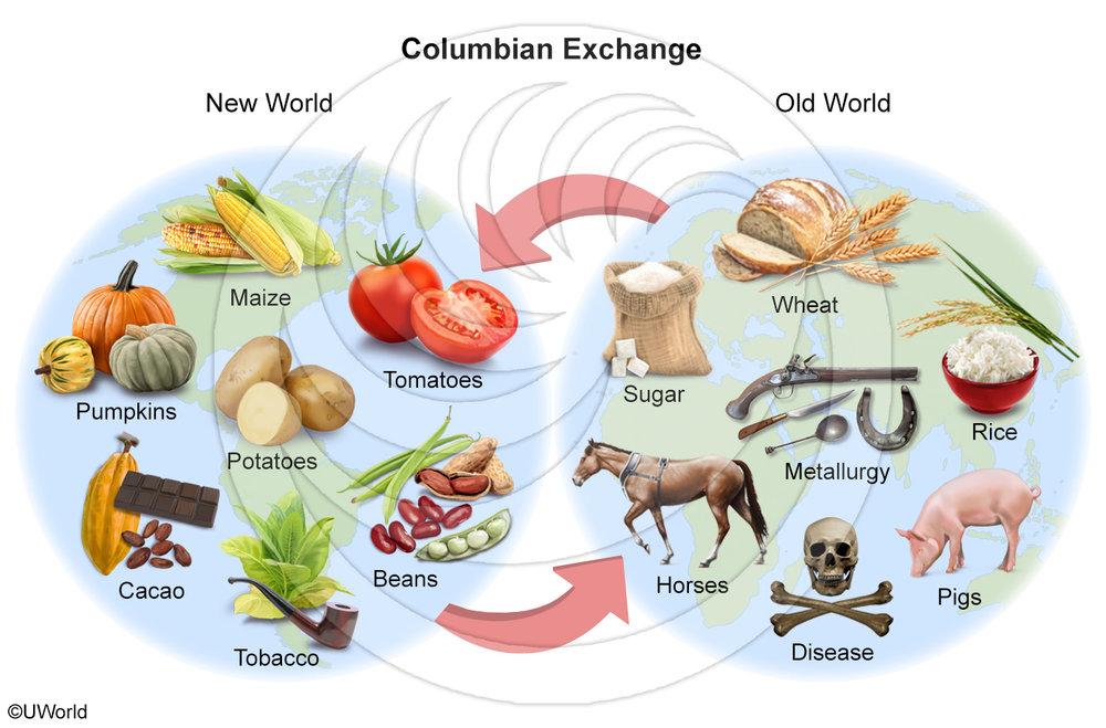 New-Columbian-Exchange-Clickable.jpg