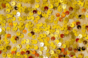 Gold Sequin NEW! - This looks the same as the others zoomed out.