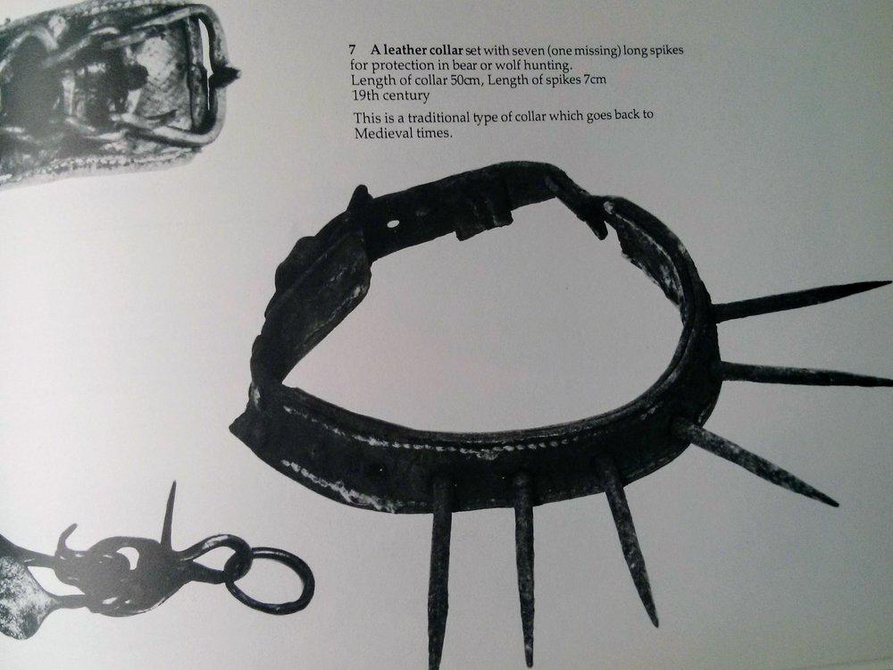 collar blog.jpg