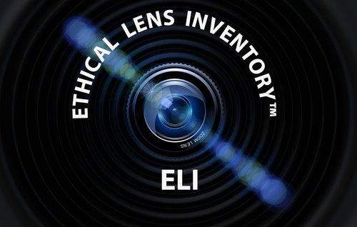 ethical lens inventory definition