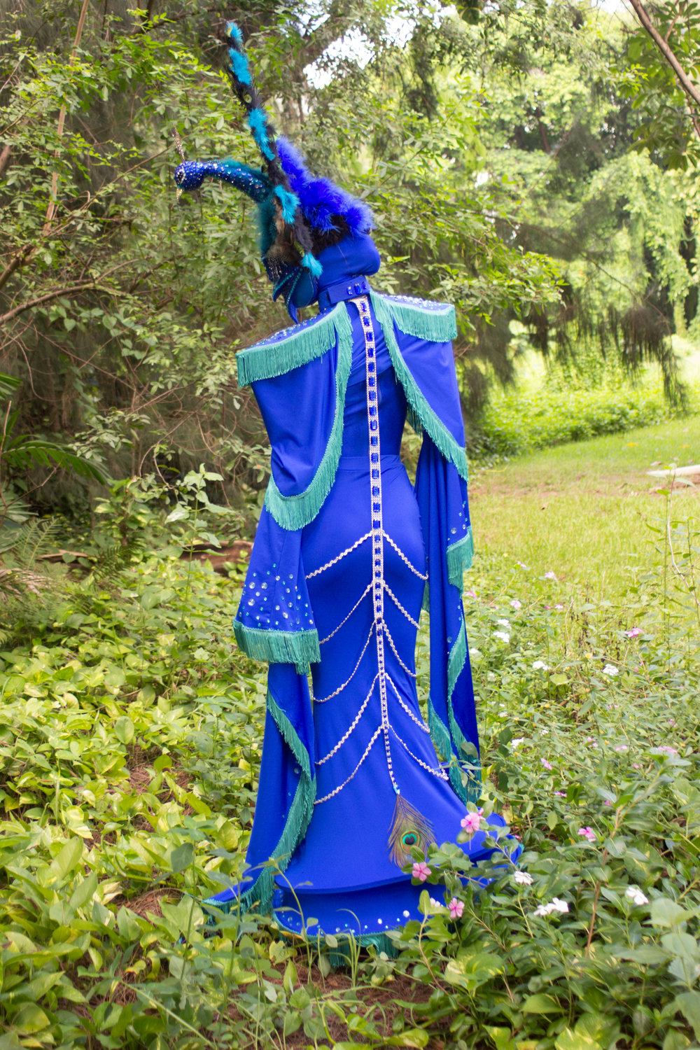 Peacock fairytale-8861.jpg