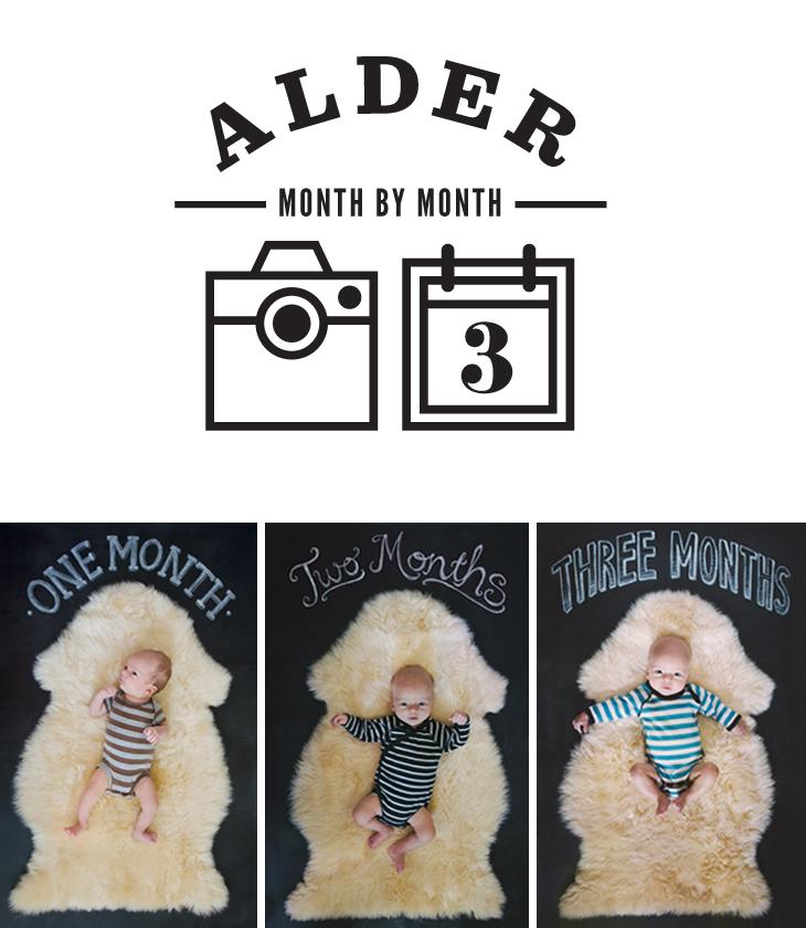 maradawn-alder-month-3-roundup
