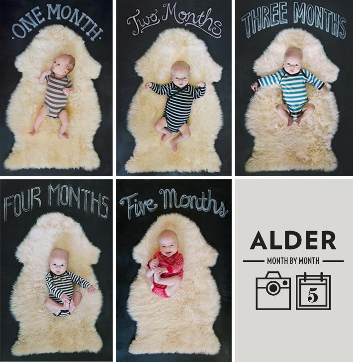 maradawn-alder-month-5-roundup