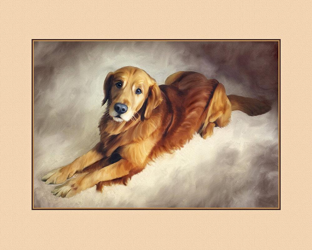 Dog 1B.jpg
