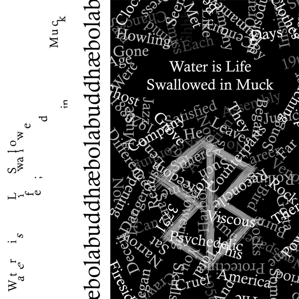 Ebolabuddha -  Water is Life; Swallowed in Muck  (2018)