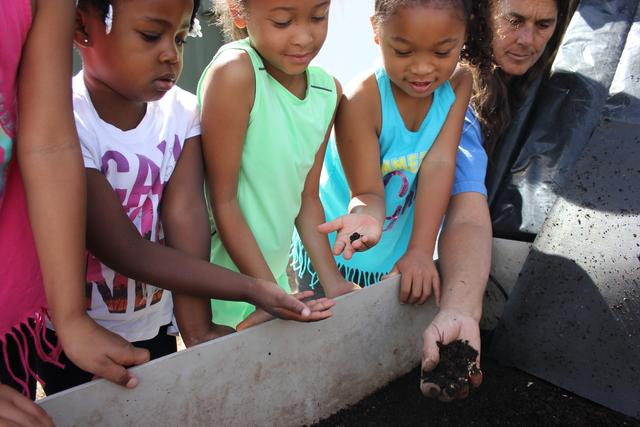 Happy Lot Farm & Greenhouse Volunteer Day