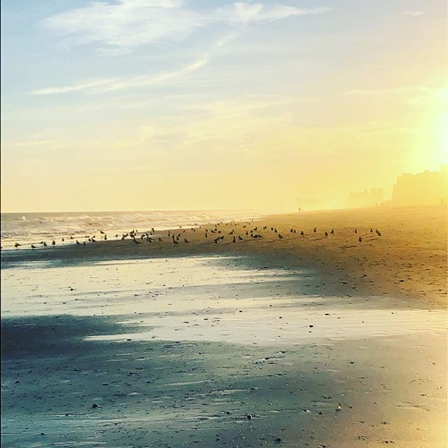 My gracious I can't believe we get to live on this gorgeous planet. Thank You for your creative beauty, God. #beachlife #lifeofanartist #sunsets