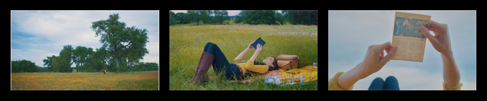 Color-Field-Frames-050.png