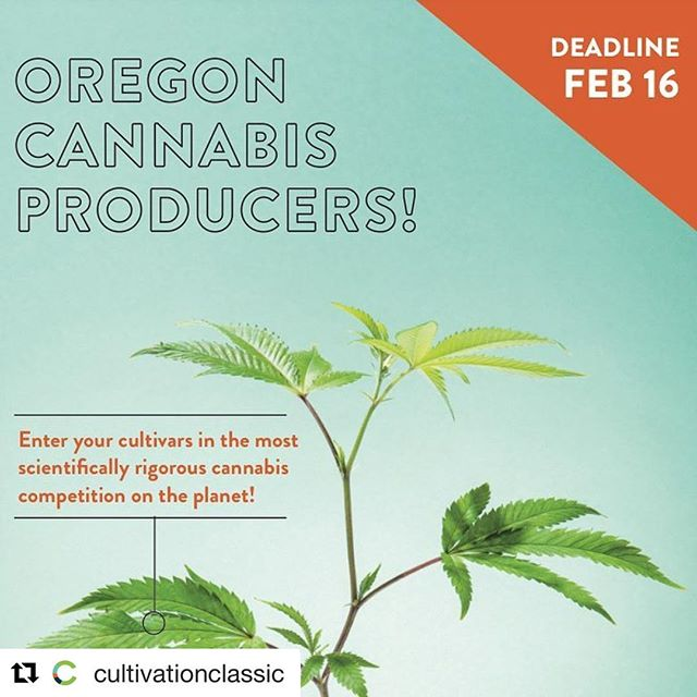 The clock is ticking on getting your submissions in for the @cultivationclassic. T-minus 4 days! ⠀⠀⠀⠀⠀⠀⠀⠀⠀ Go show them what #livingsoils can do!