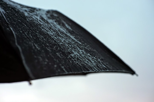 Click to see picture of an umbrella in the rain