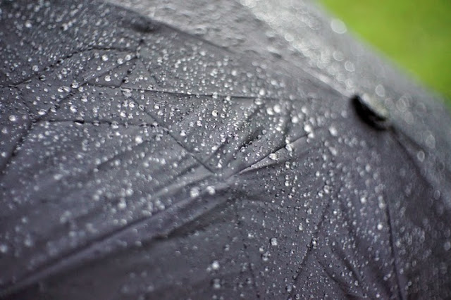 Click to see picture of umbrella in the rain
