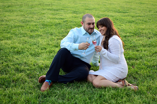 Engaged couple toasting at Bulter Park in Austin, Texas.