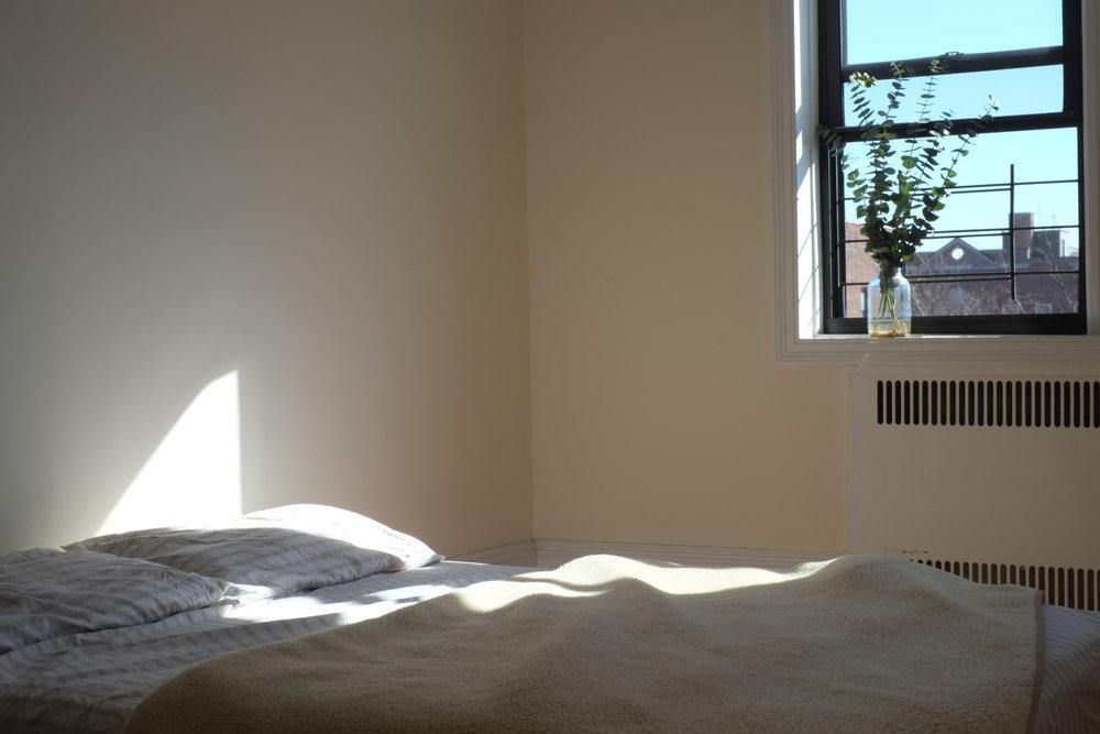 Afternoon Light.jpg