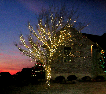 christmas-lights-yellow-tree-house.jpg