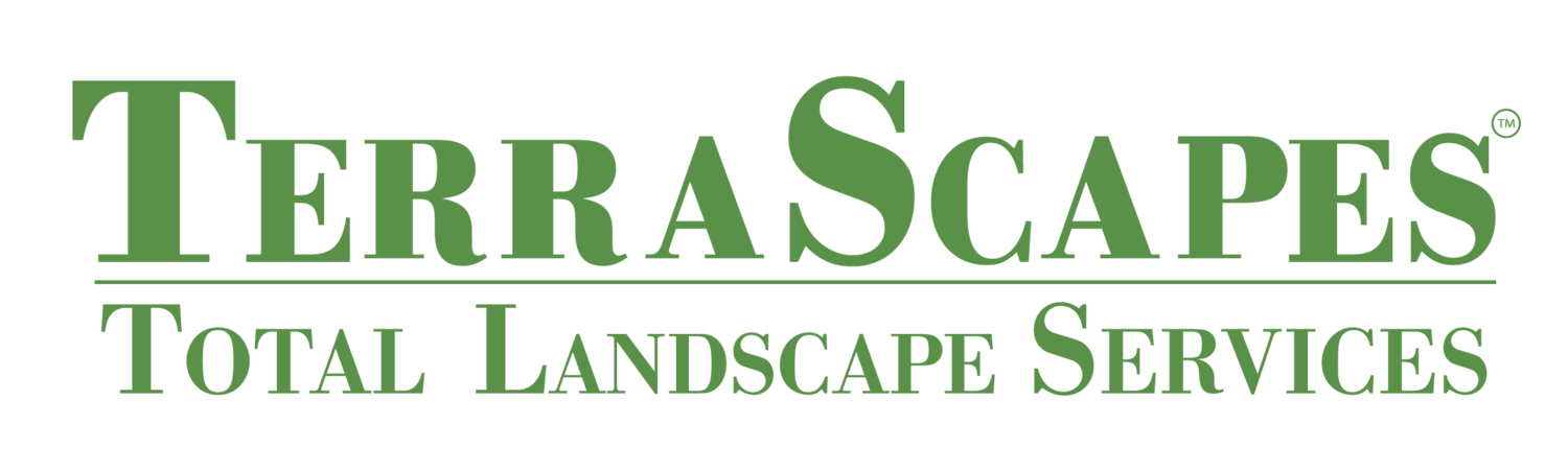TerraScapes | Landscapes Maintenance & Design