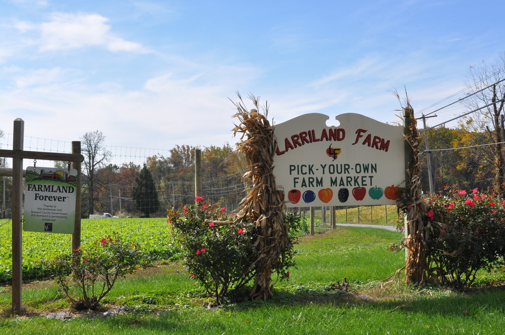 Larriland Farm Sign.jpg