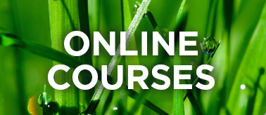 home_thumb_online_courses.png