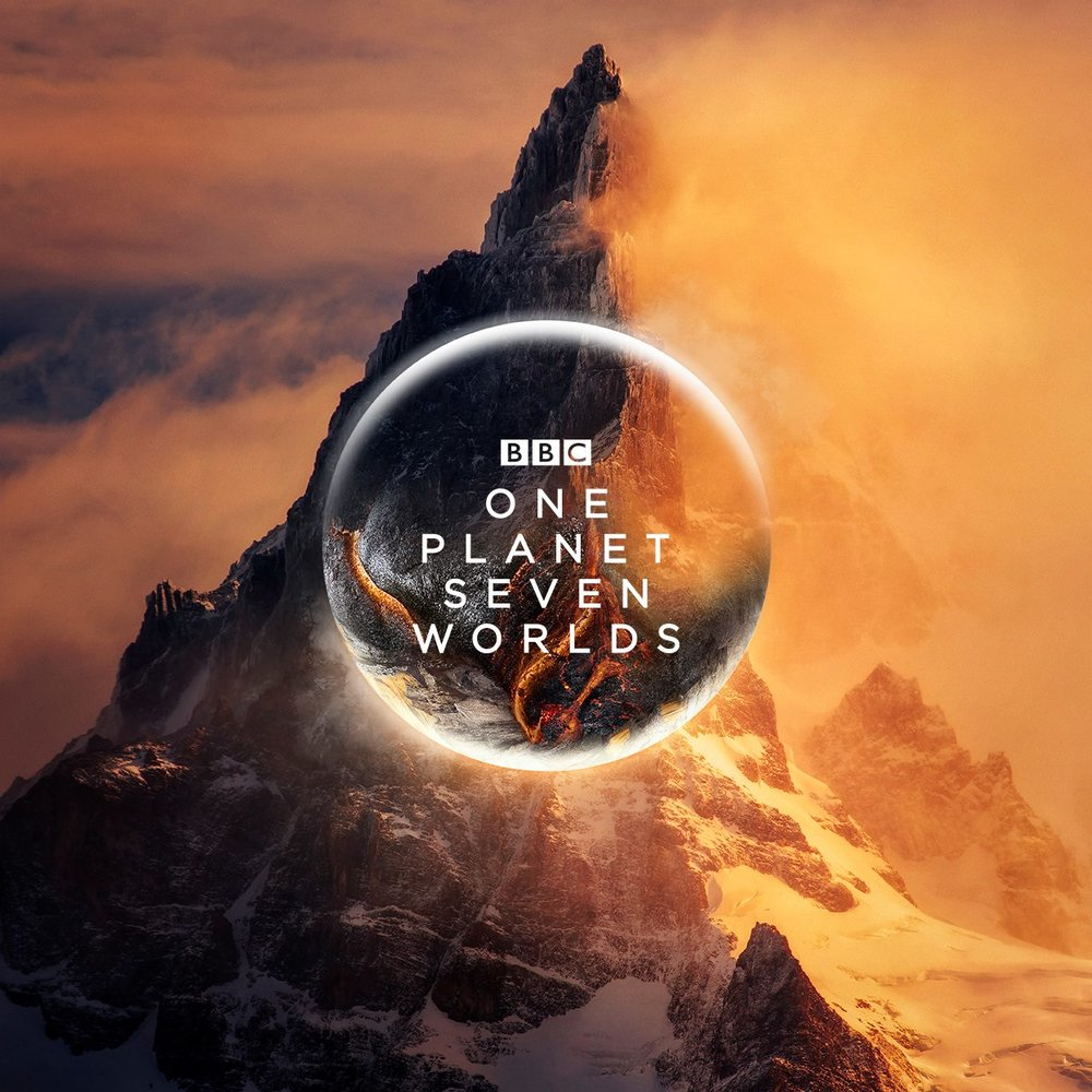 JUNIOR RESEARCHER  BBC NHU's new wildlife blue-chip series SEVEN WORLDS. Logged wildlife rushes using Avid into story steps for the edit, contacted scientists for story ideas, conducted phone/Skype interviews and contributed to editorial meetings and short edits for viewings.