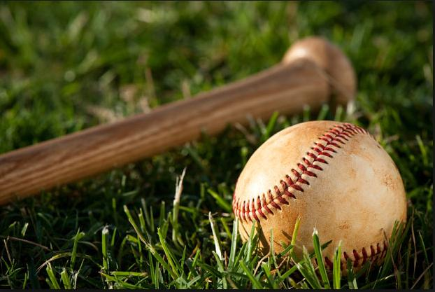 Bat,Ball,Grass Pic.jpg
