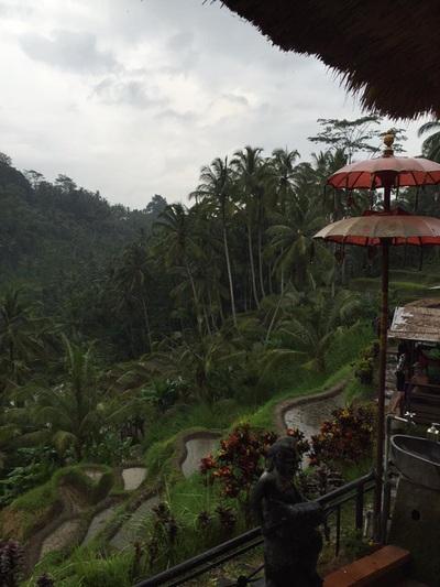 eat pray doula ballarat birth support bali indonesia (22).jpg
