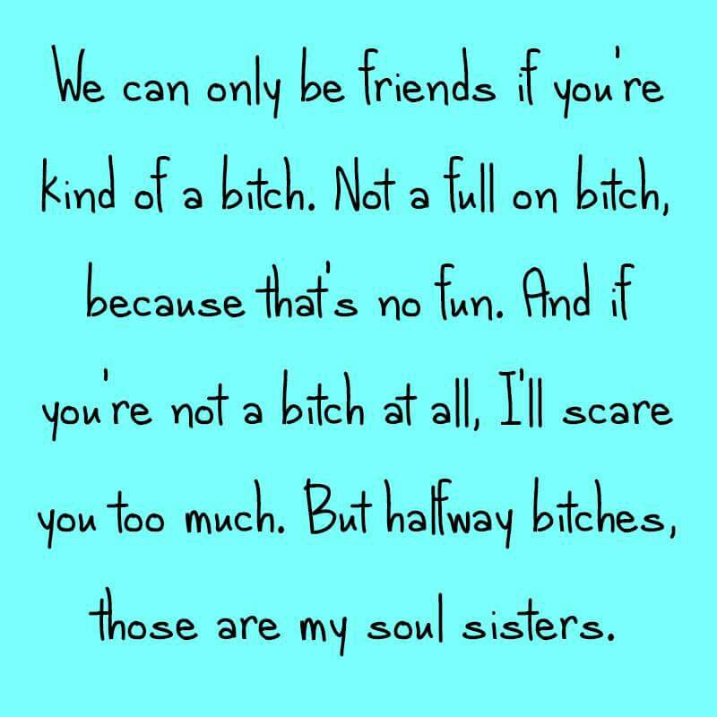 These types of friends encourage us to be full on bitches. Friends with whom we only show our best are the fake friendships. Lets all be halfway bitches! Lol x
