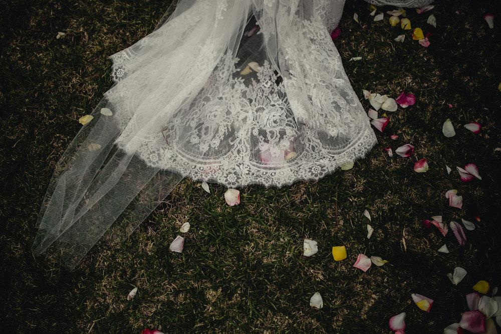 Caitlin_James_Wedding_Andy-429.jpg