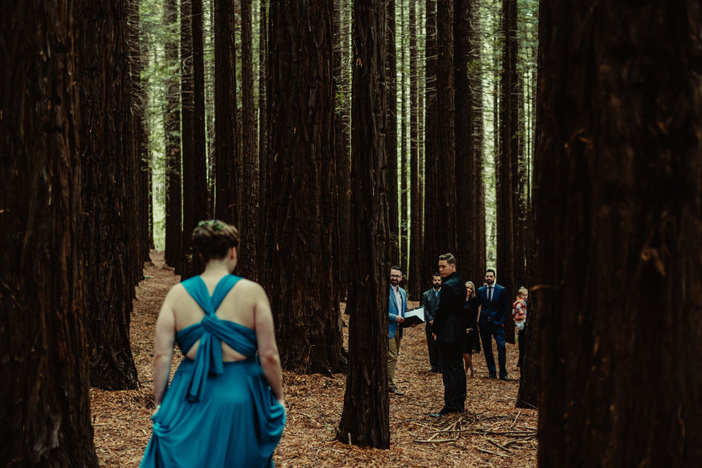 016-redwood-forest-warburton-wedding.jpg
