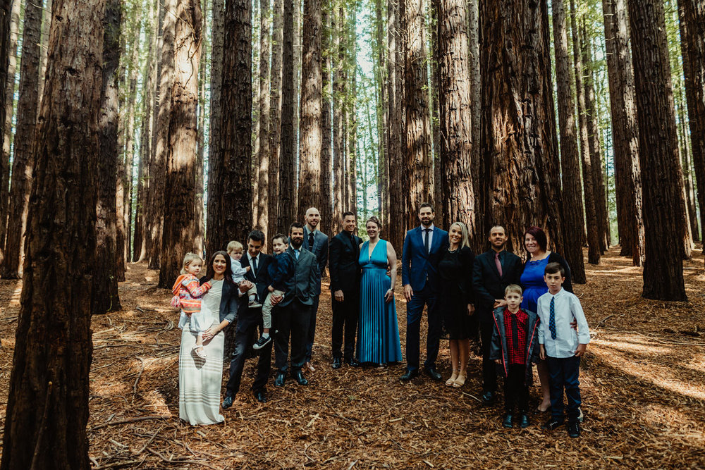 026-redwood-forest-warburton-wedding.jpg