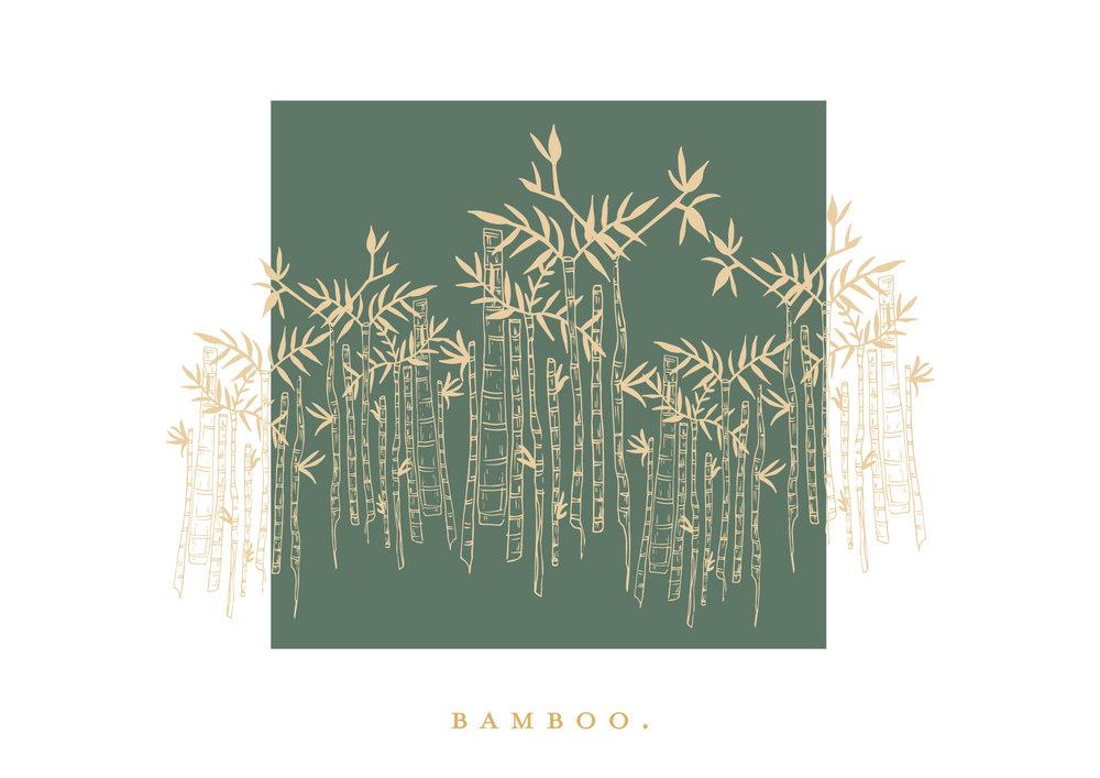 Bamboo.Co.jpg