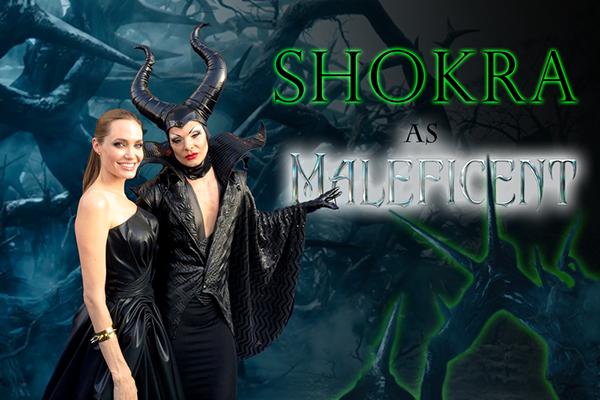 Shokra: Website Banner Creation