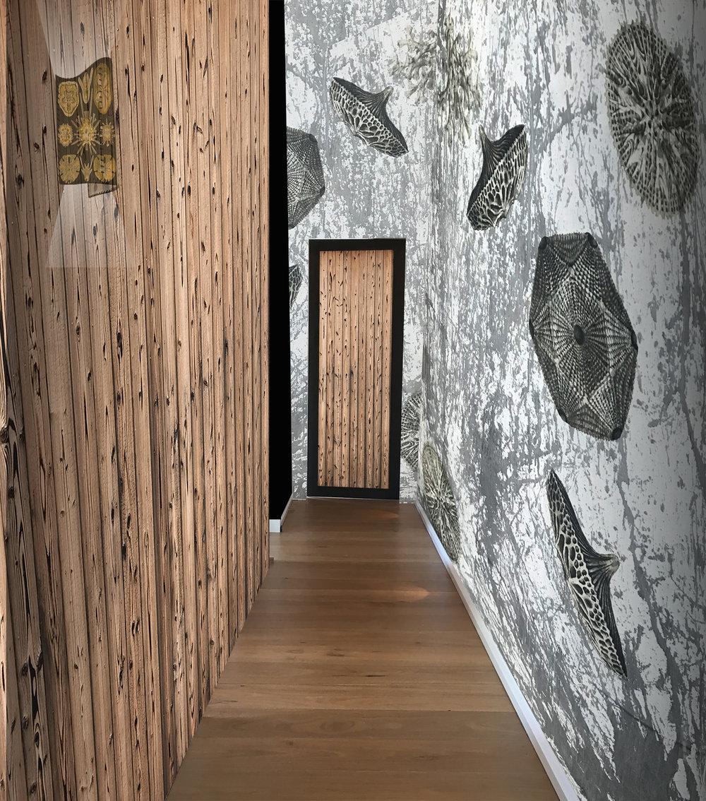 Ernst Haeckel Interior textures