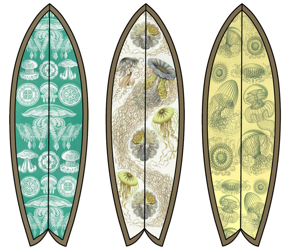 Ernst Haeckel geometric designs