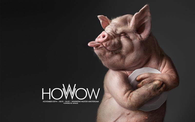 HowWow2017_Illusion.jpg
