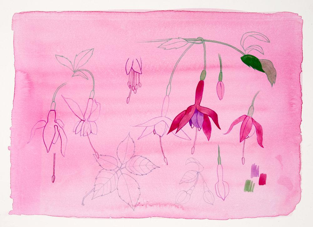 David Lyon Art - NN - Fuchsia - 300dpi.jpg