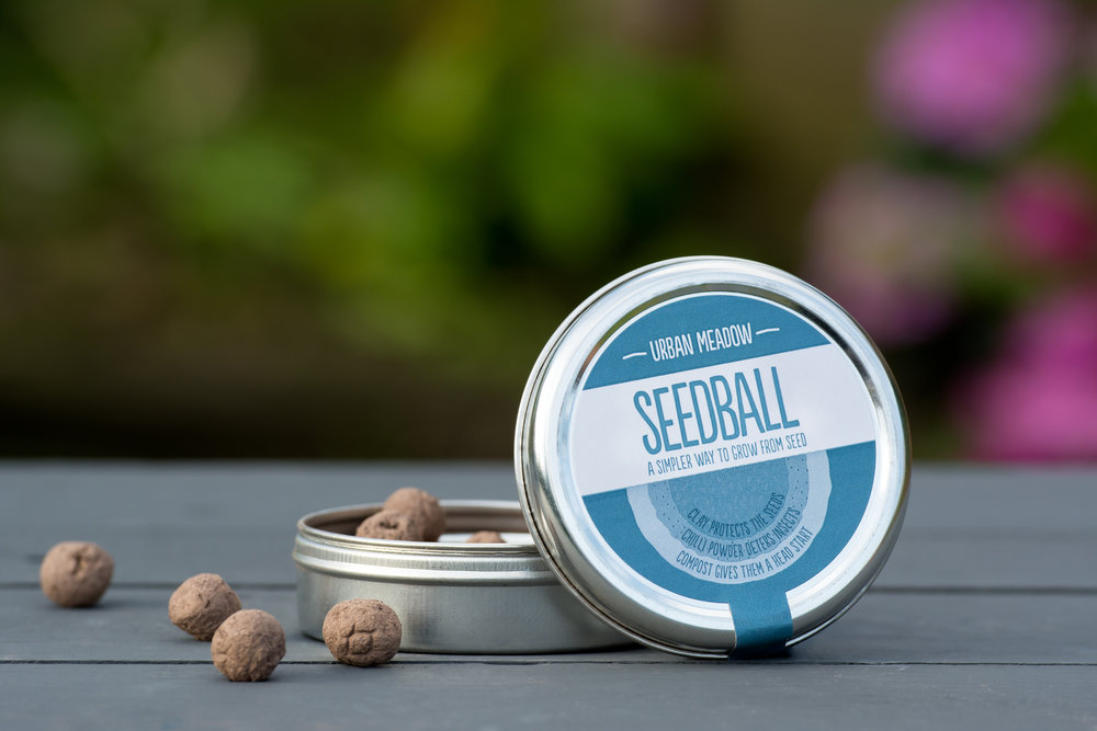 Seedball - Seeds, clay, peat-free compost and chili powder in a ball.