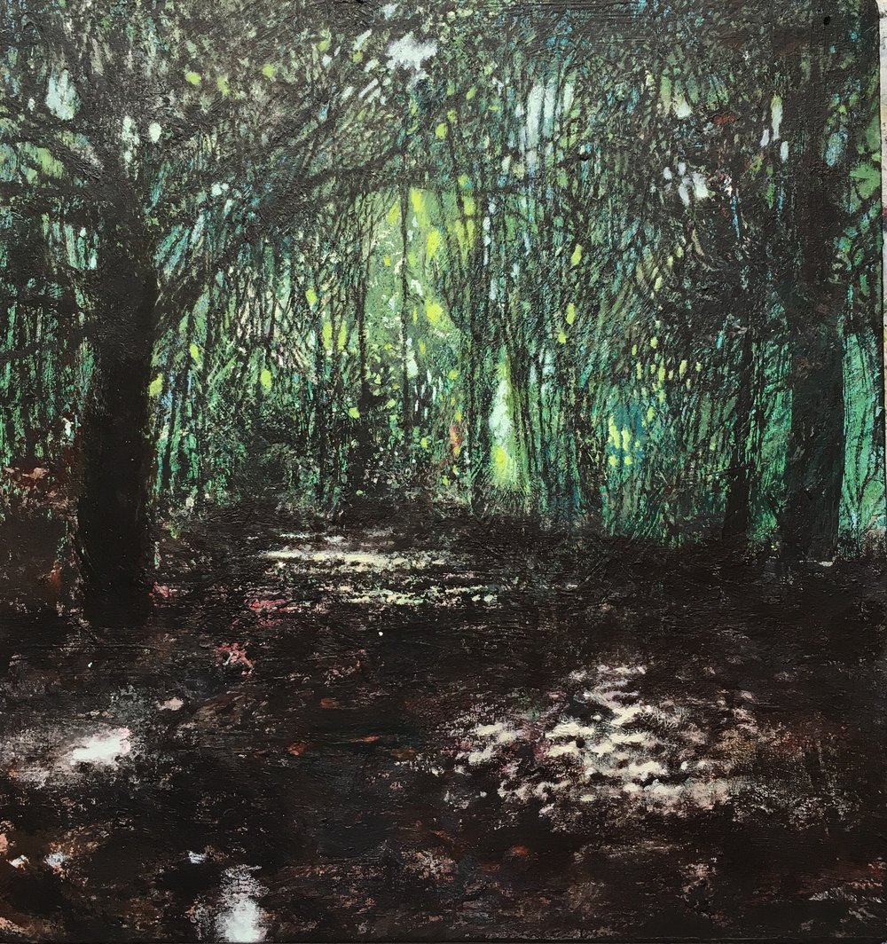 David Lyon Art - David is a fine artist based in Leeds fascinated by natural form. He is in the process [and possibly always will be] of developing an organic way of working that refers to the world around us but recalls, reshapes and reimagines that world by memory.