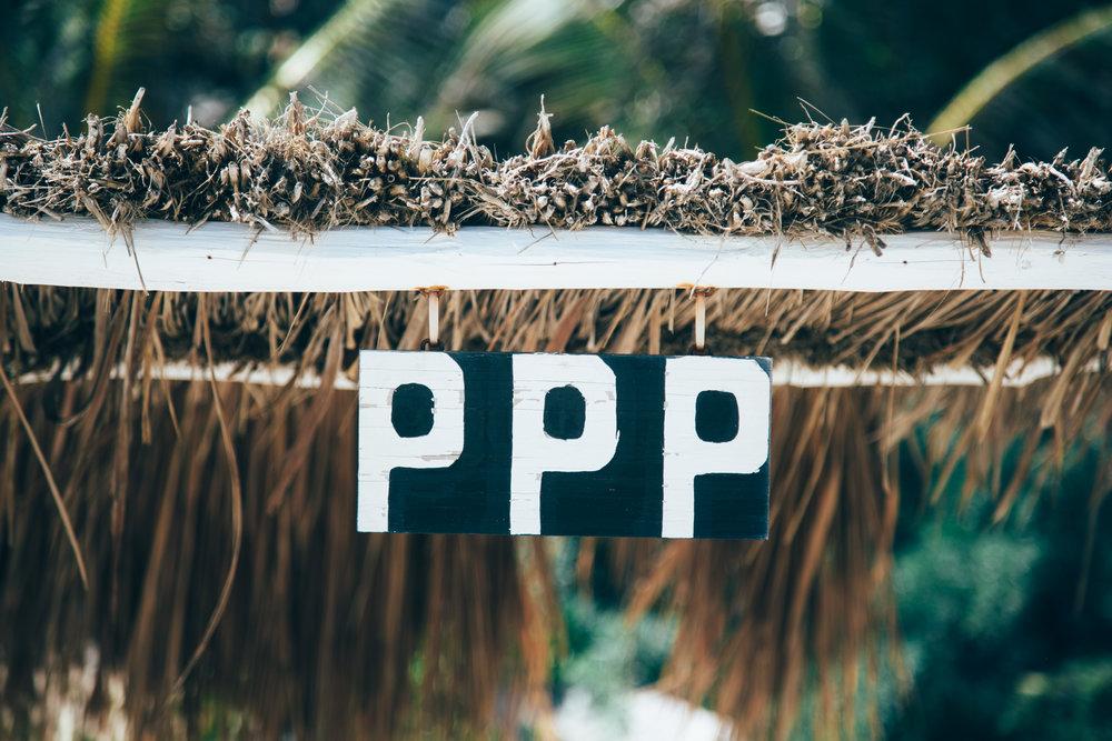 ppp_sign_C_Lamb-3606.jpg