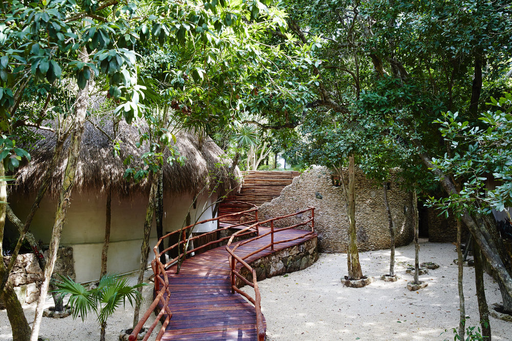 PPP_Jungle Casita_63.jpg