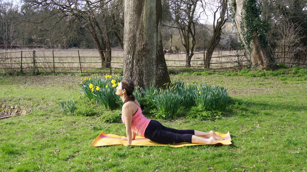 Breathe in as you lift up into upward- facing dog each time