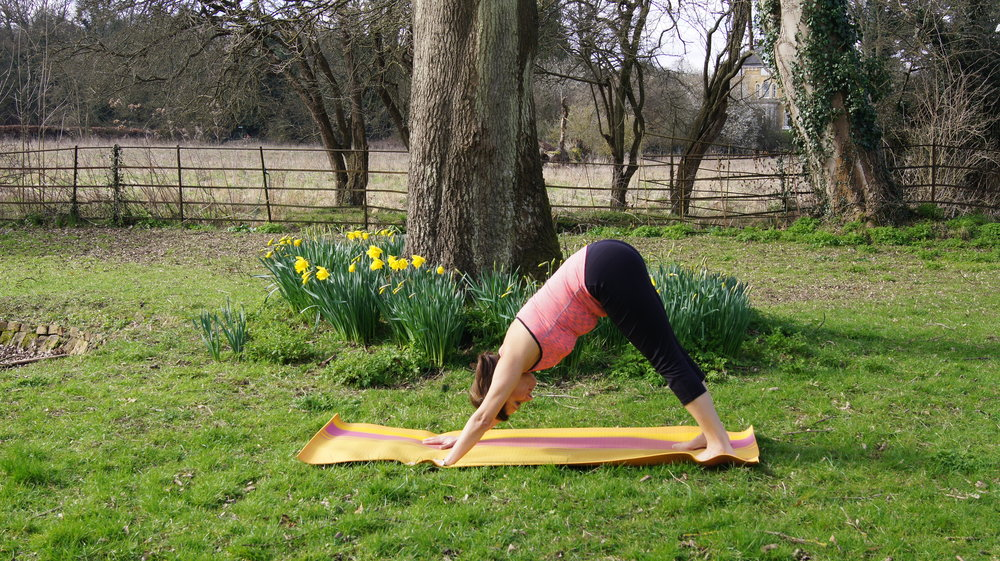 Breath out as you come into downward - facing dog each time