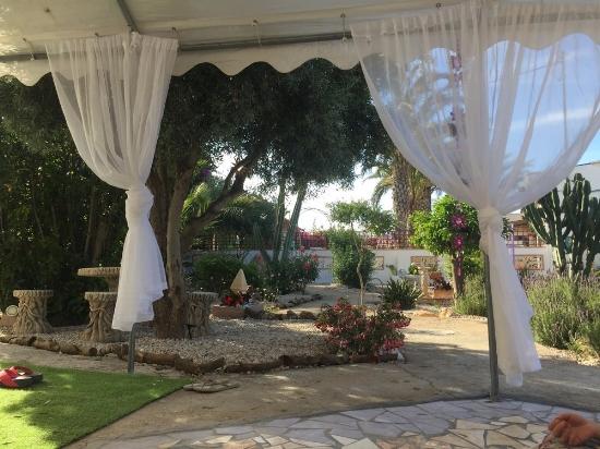 Stunning peaceful Garden at Tara Casa retreat centre in Murcia, Spain  .jpg