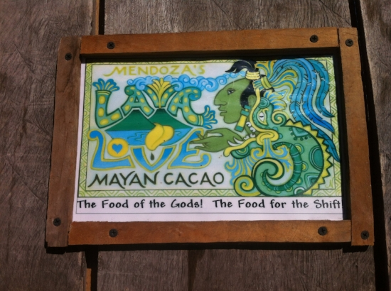 Cacao ceremony using mayan cacao
