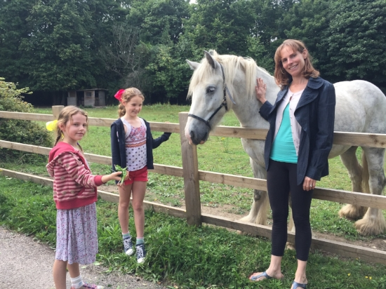 It is wonderful to wonder around the grounds of Park Place and meet the horses.