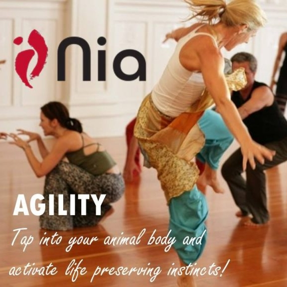Nia dance workshop in Chipperfield November 2018