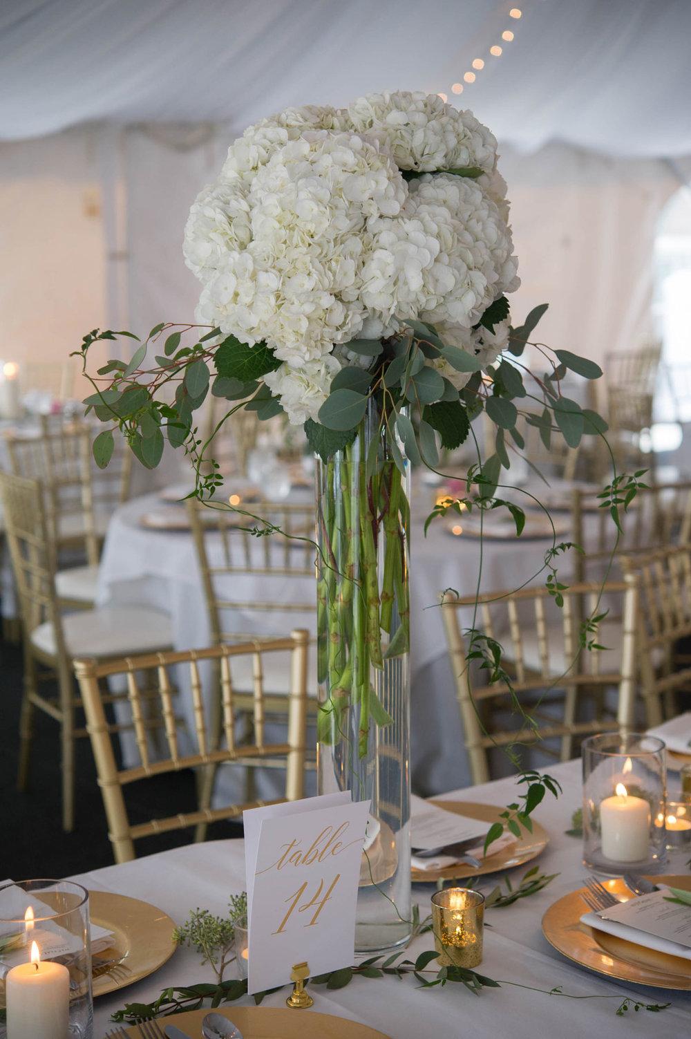 Cooper-wedding-(572).jpg