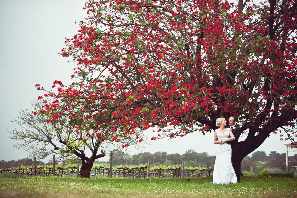 Wedding Photography Sydney1 (2).jpg