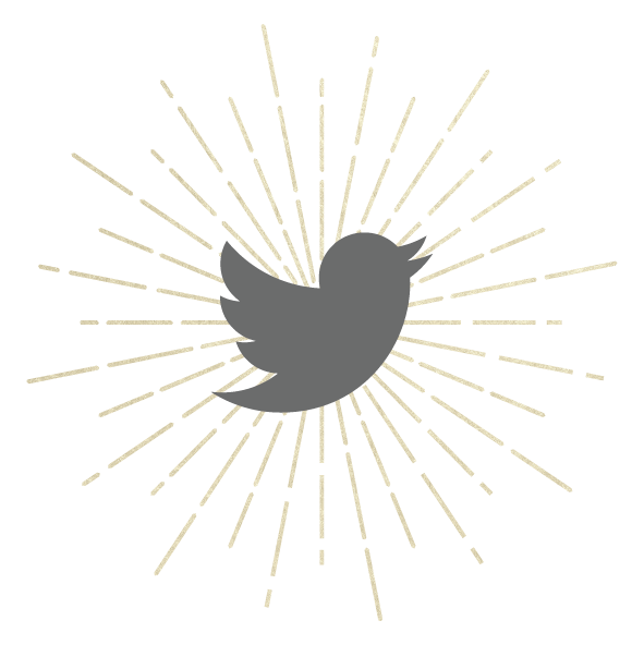 Swoon Aesthetic Spa - Twitter Icon