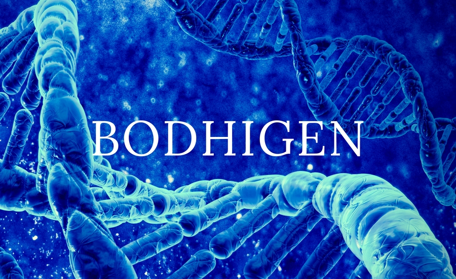 BodhiGen, advanced genetic analysis and genetic testing.