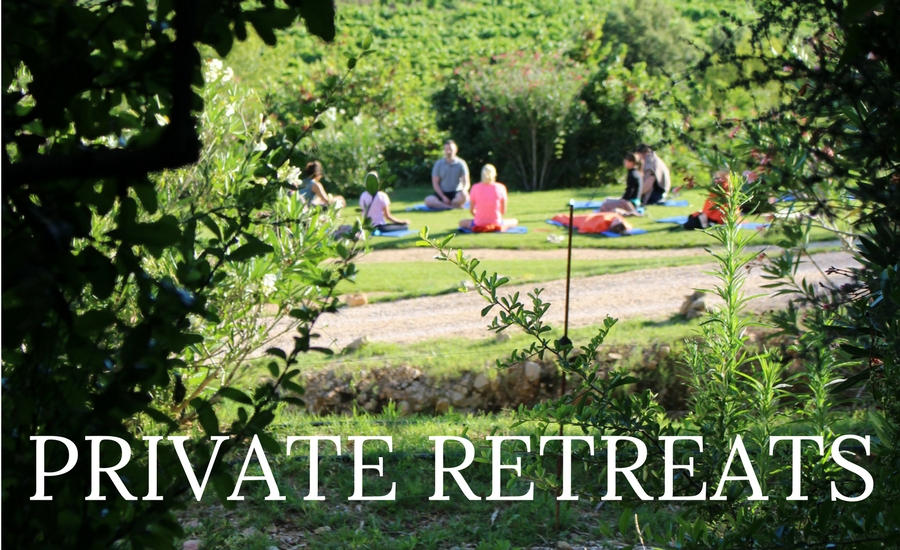 We also offer private detox retreats, corporate retreats and corporate wellbeing   experiences